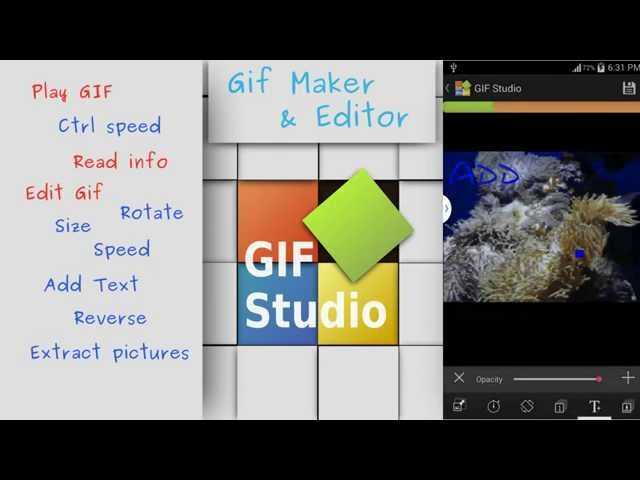 Best GIF Maker Apps for iPhone and Android